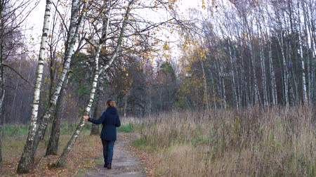 A slender woman in a blue jacket and blue jeans walks through the autumn Park along the path among the birches admiring nature on a cloudy autumn day.