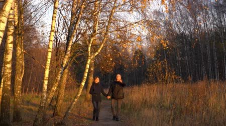 Slender man and woman walking in the autumn Park among the birches, holding hands, talking and smiling at each other at sunset.