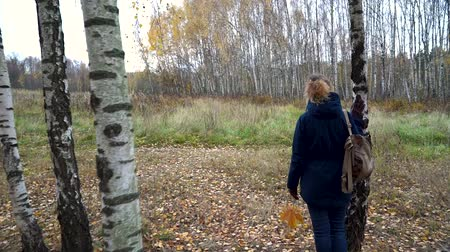 A slender woman in a blue jacket and with a backpack on her shoulder walks among the white birches in the autumn forest on a cloudy day.