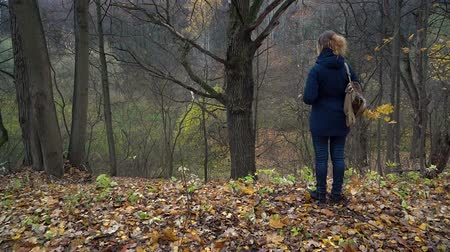 A slender woman in a blue jacket and with a backpack on her shoulder stands on the edge of a ravine in the autumn forest and looks at a tall dry oak on a cloudy day. Stockvideo
