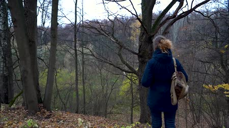 hayran olmak : A slender woman in a blue jacket and with a backpack on her shoulder stands on the edge of a ravine in the autumn forest and looks at a tall dry oak on a cloudy day. Stok Video