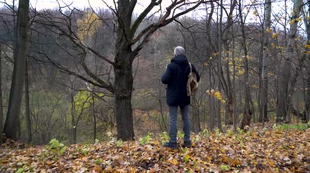A slender man with gray hair stands on the edge of a ravine in the autumn forest and looks at a tall dry oak on a cloudy day.