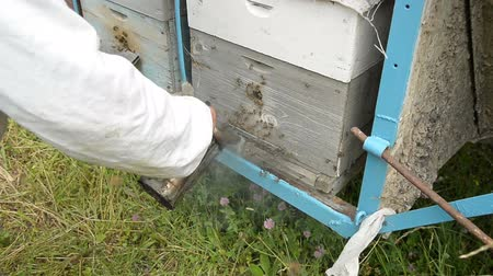 apiary : The old beekeeper processes the entrance to the hive with smoke from a special smoke kettle.