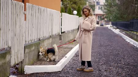 záchod : Stylish blonde walking his dog and did not notice how the animal village to defecate in the toilet on the lawn at the fence of the house.