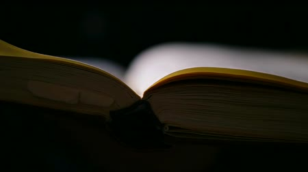 turn table : Close up shot of a mans hand turning the page of the book. Stock Footage