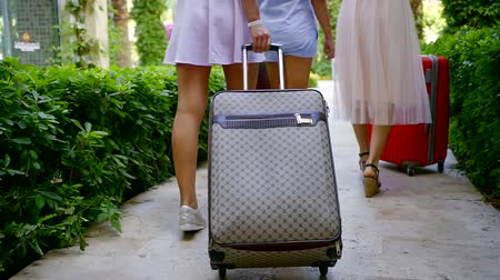 arriving : three women are carrying their suitcases, walking over path in garden of hotel in summer day