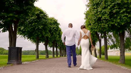 reunir : The man and his bride are walking along the road through tall trees Stock Footage