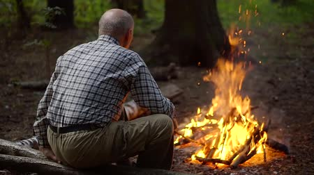 bald mountain : Elderly single man basking by the fire in a pine forest. the view from the back Stock Footage