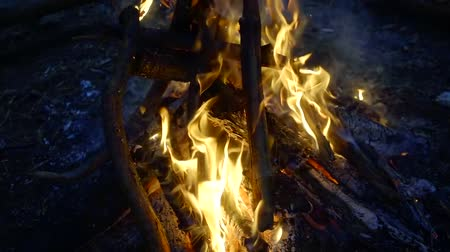 arson : dry trees branches are burning inside a campfire in night time in forest