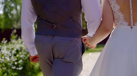 новобрачный : bride and groom are wearing wedding clothes are walking in park in sunny day, holding hands, back