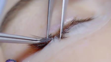 szempillák : lash maker is gluing false lash on natural lash of woman in a beauty salon during lash extensions