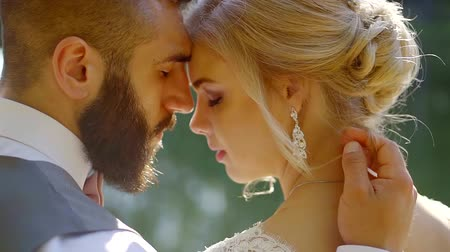 прижиматься : romantic loving groom and bride are hugging, touching by foreheads in sunny day, close-up