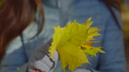 září : girl is holding vivid yellow maple leaves in hands, wearing warm gloves, close-up of hands