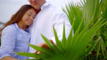 прижиматься : happy brunette woman is snuggling to chest of her husband, wearing white shirt, and stroking green palm leaf Стоковые видеозаписи