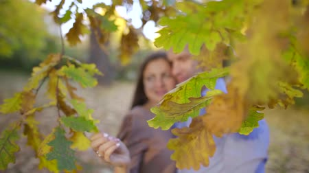 cherish : Shot of a two people in love together in a fall forest. Stock Footage