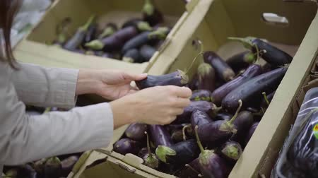raflar : Close-up shot of a woman picking fresh tasty eggplant in a grocery store. Stok Video