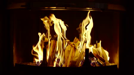 inflamável : firewood is burning in fireplace in home in night time, close-up view, warming and lighting a room