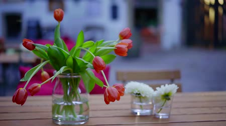 Close-up shot of a beautiful red tulips in vase on wooden tale outdoor.