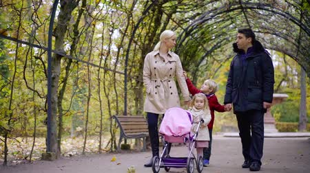 Beautiful big family walking hand in hand in a park together. Stock mozgókép