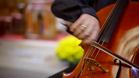 виолончель : Close-up shot of a talented playing on a cellow with bow, beautiful luxury musical instrument.