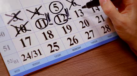 úterý : close up. calendar of the month womens hand felt pen highlights important days this week Dostupné videozáznamy