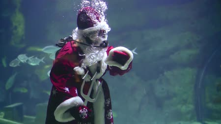 pozdravy : Santa under water in scuba diving swims in a flock of fish . sends his regards to waving