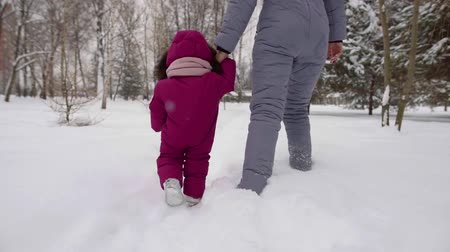 beckoning : woman is holding hand of her infant baby and learning it to go in winter day, stepping over snow Stock Footage