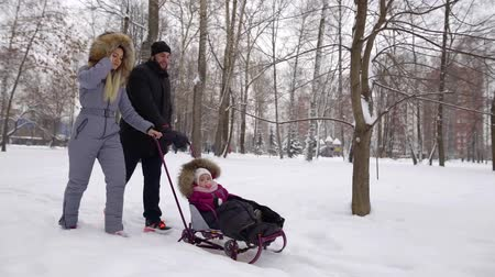 wozek dzieciecy : happy married couple is walking in park in winter and carrying their baby on sledge stroller Wideo
