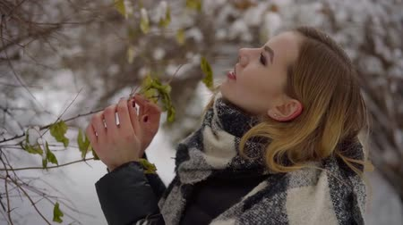 stroll : young pretty woman is watching snowy tree in park, she is touching dry and frozen leaves by hands
