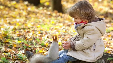 autumn : Happy child feeds a little squirrel in autumn park