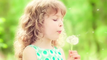 dmuchawiec : Happy child blowing dandelion in spring outdoors. Slow motion