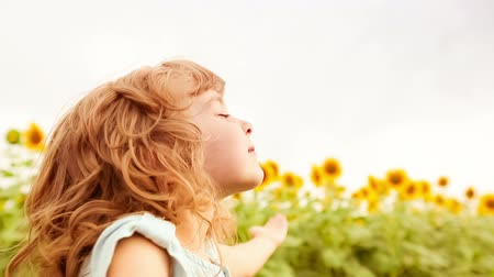 girassóis : Happy child enjoying in spring sunflower field. Slow motion Vídeos