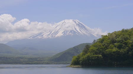 dünya mirası : Mt.Fuji and Lake Motosu,in Yamanashi,Japan Stok Video