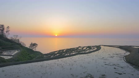 superb : A Thousand Rice Paddies in Shiroyone Ishikawa.Filmed in 4 K. Stock Footage