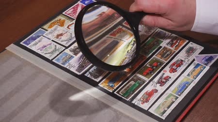 Philately. Browsing pages of stockbook. Philatelist is browsing carefuly the pages of a stockbook Стоковые видеозаписи