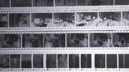 Film Negatives. Photographic roll film 35mm
