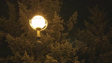 sokak lâmbası direği : Snowing at night on the background of a lamppost. Big snowflakes falling on lonely street lamp