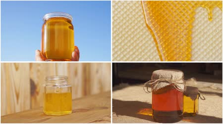 Honey collage. Different types of honey