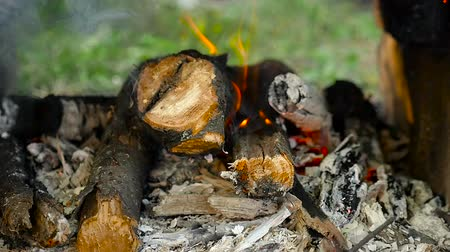 The firewood burns in slow motion in the open air. Close-up.