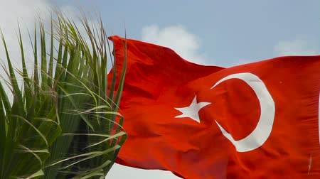 The flag of Turkey fluttering in the wind. Beautiful flag with a palm tree Стоковые видеозаписи