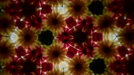 kalejdoskop : Refraction of pattern plant and flower through glass, view from inside of scientific equipment.