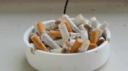 огрызок : Cigarette stubs in the ashtray. Dolly shot. Стоковые видеозаписи