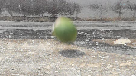 kořist : Watermelon fall on ground and broken to reveal watermelon flesh, food backgrounds.
