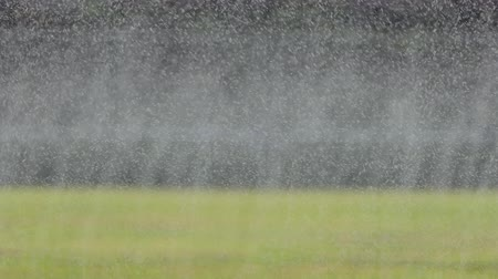 орошение : Drop water of many mini sprinkler watering in football field.