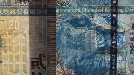 filigran : Close up of a banknote in transparency. Hong Kong dollar Stok Video