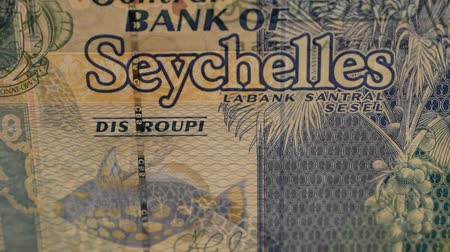 Close up of a Seychelles banknote Vídeos
