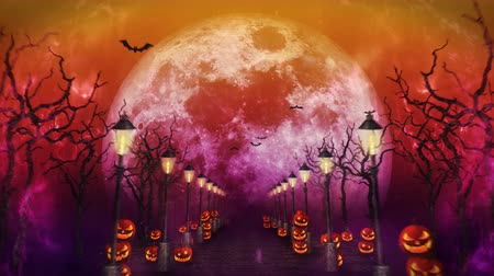 bat : Spooky Halloween night, Pumpkin in a mystic forest Loop Stock Footage