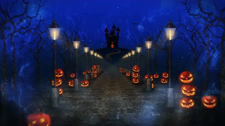 bizarre : Spooky Halloween night, Pumpkin in a mystic forest Loop Stock Footage