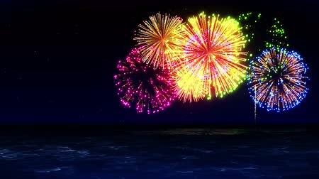 chryzantema : Colorful Fireworks Light Up the Sky, CG Animation, Loop,