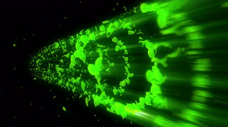 hızlanma : Vortex from green leaves. Spiral shiny particle of seasonal leaves. Dancing leaf. Colorful nature tunnel loop animation. Stok Video